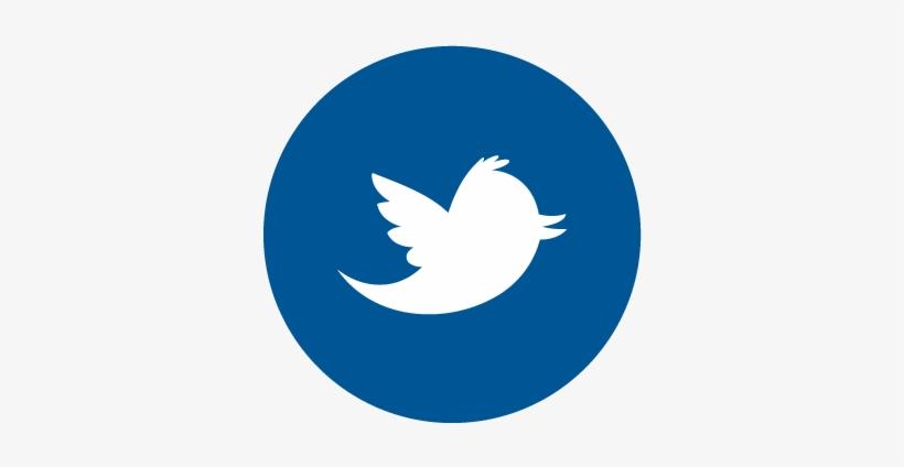 Twitter Vector Facebook Logo Dash Coin Logo Png 360x360 Png