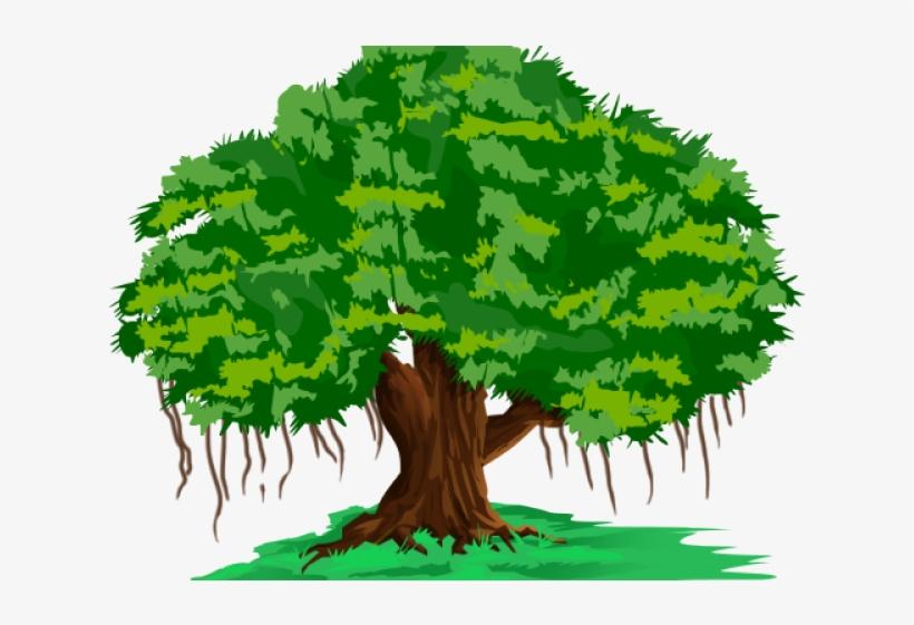 Cartoon Images Of Banyan Tree