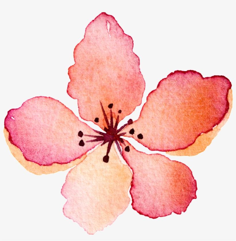 Flores Rojas Pintadas A Mano 1024x1024 Png Download Pngkit