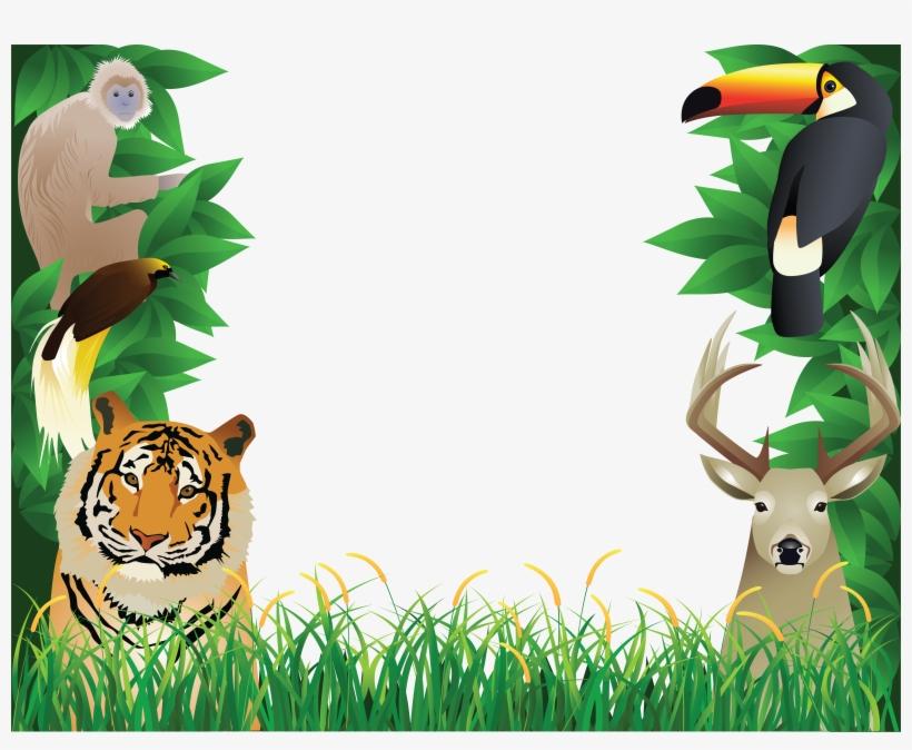A nature jungle background - Download Free Vectors, Clipart Graphics &  Vector Art