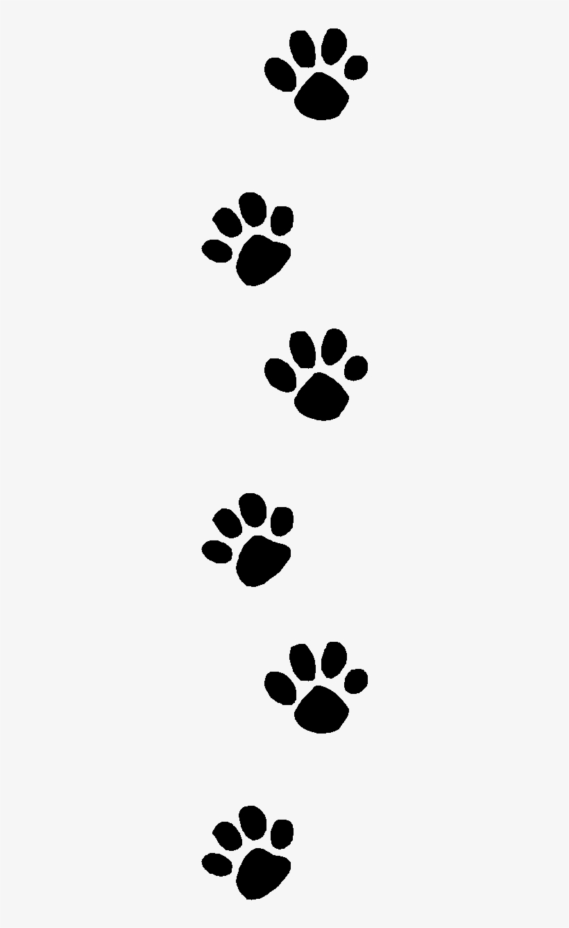 Wildcat Clipart Dog Print Transparent Paw Print Clip Art 256x1262 Png Download Pngkit Drawing arrow, loop arrow, angle, leaf, text png. wildcat clipart dog print transparent