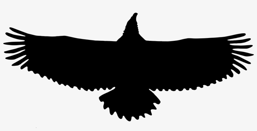 Bald Eagle Silhouette Eagle 2218x1018 Png Download Pngkit Eagle silhouette stock vectors, clipart and illustrations. bald eagle silhouette eagle