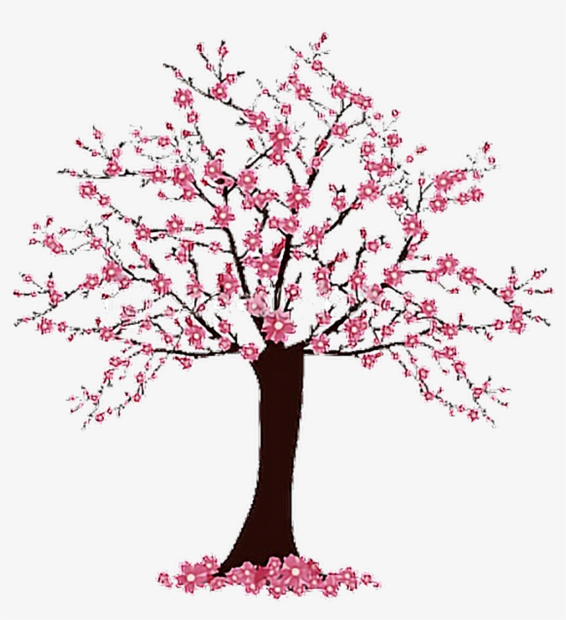 Blossom Tree Drawing: Simple Cherry Blossom Tree Drawing