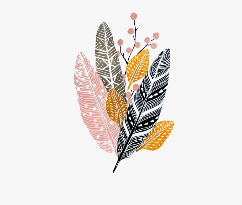 Paper Watercolor Painting Feathers Fond D Ecran Plume 510x728 Png Download Pngkit