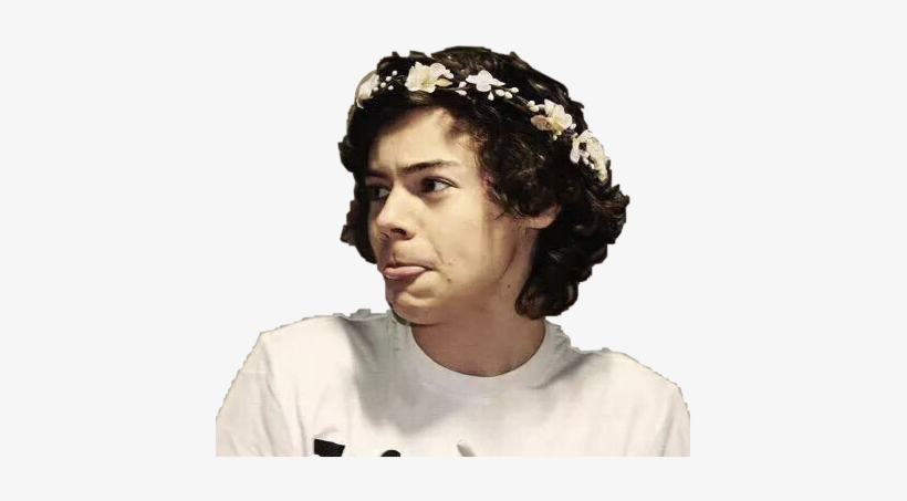 Harry Styles With Flower Crown