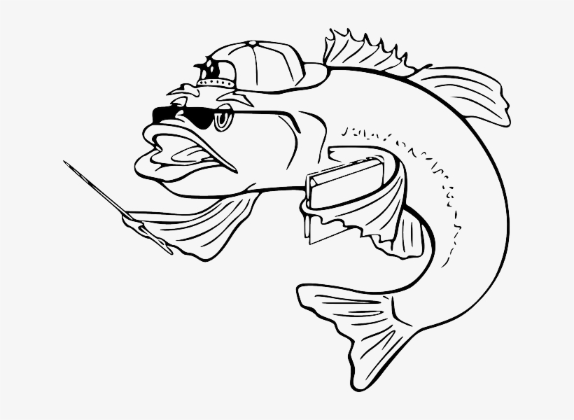 black  teacher  outline  white  cartoon  bass  fish - fish clip art - 640x520 png download