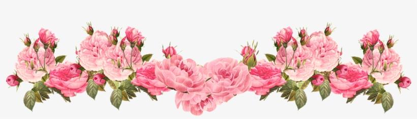 Pink Rose Clipart Rose Border 20 Vintage Flower Border Png