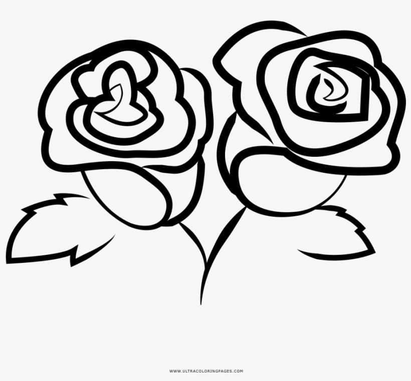Dibujo De Rosas Para Colorear Frida Restaurant Springfield Mo 1000x1000 Png Download Pngkit