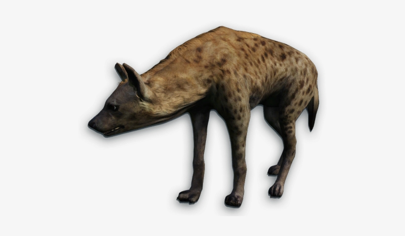 Far Cry 2 Animals Download Far Cry Primal Hyena 508x405 Png