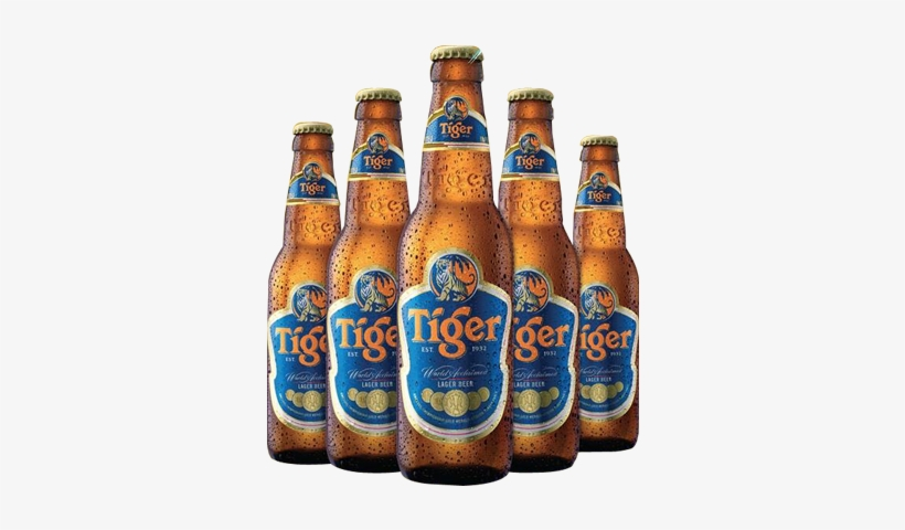 Tiger Beer Bucket Png Tiger Beer 24x 330ml Bottles 363x406 Png