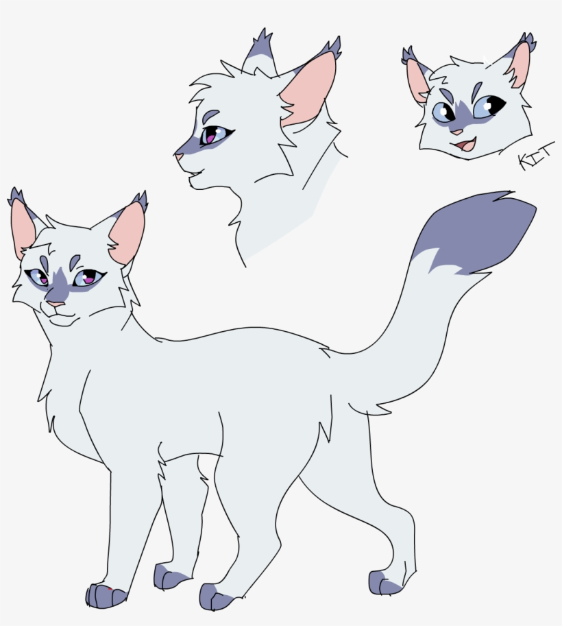 My Snowfur Design Warrior Cat Drawings Warrior Cats