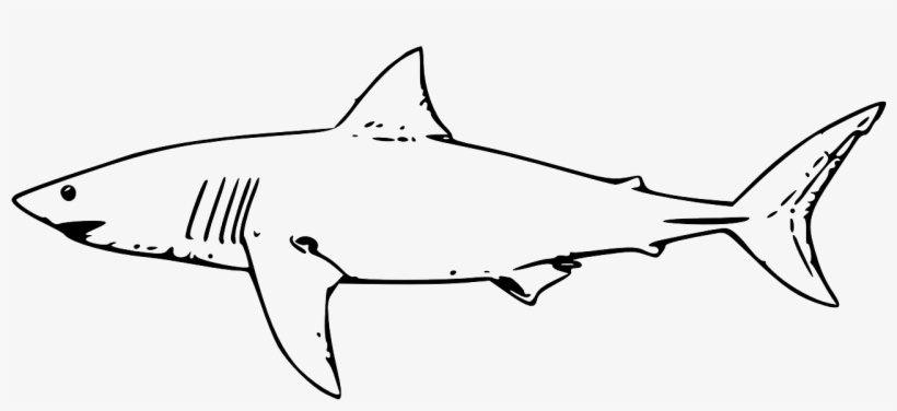 15 Jaws Shark Coloring Pages - Printable Coloring Pages