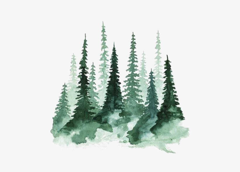 forest png transparent hd photo watercolor trees 500x511 png download pngkit forest png transparent hd photo