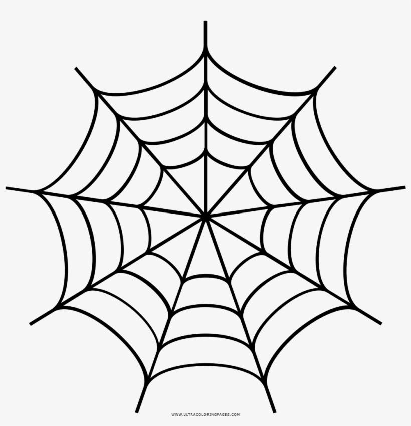 Spider Web Drawing Desenho De Teia De Aranha Para Colorir