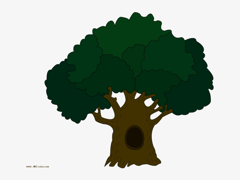 Download Bitmap Picture Oak Tree Tree Clipart 822x567 Png