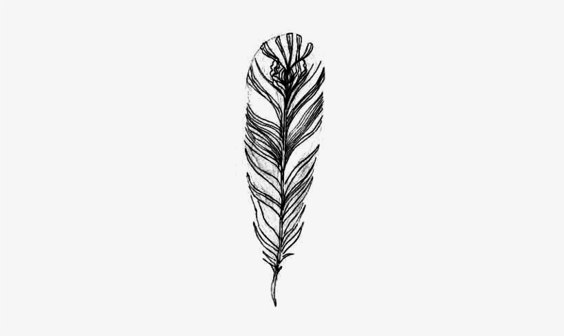 Transpa Feathers Hipster Banner