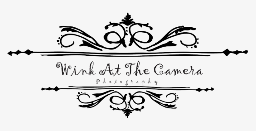 Wink At The Camera Photography Logo Camera Logo For Photography Png Logo 775x341 Png Download Pngkit