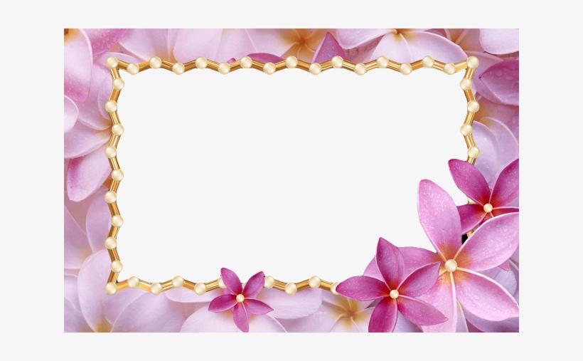 Png Frame Love Frame Png Flower Frame Wedding Frame