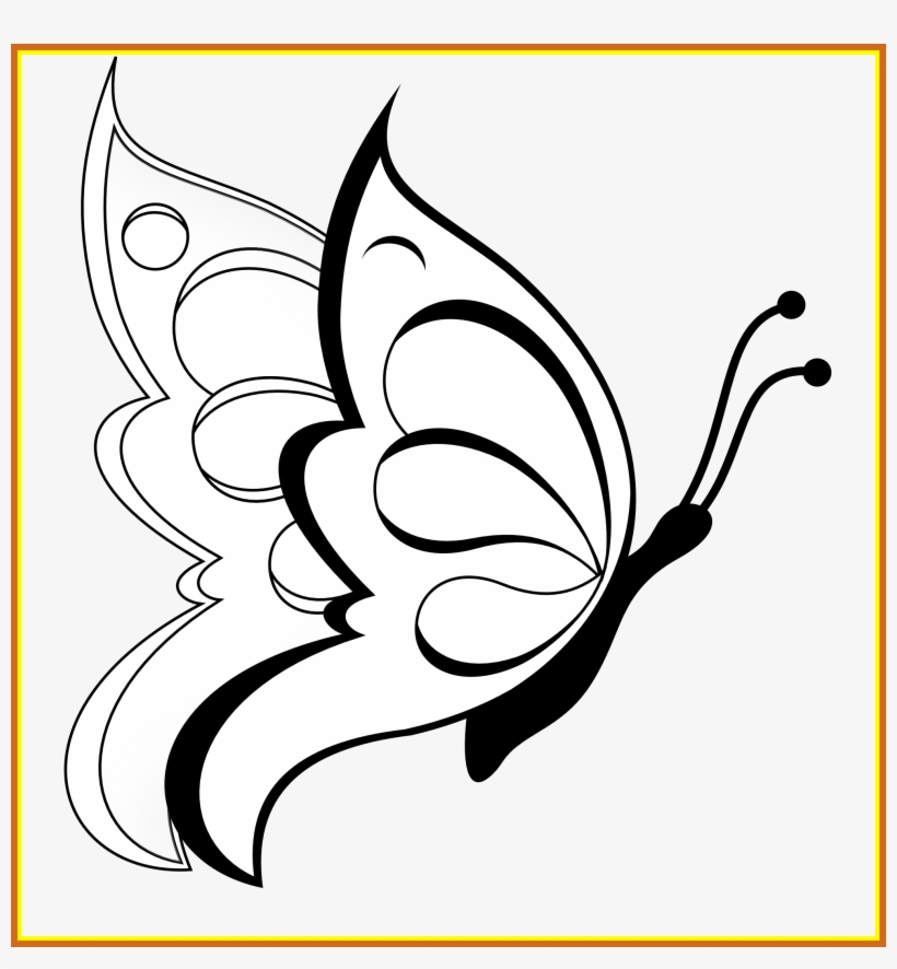 Shocking Butterfly Clipart Black White Line Art Coloring