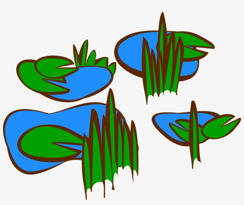 Lily Pad Clipart Simple Marsh Clip Art 909x720 Png Download Pngkit