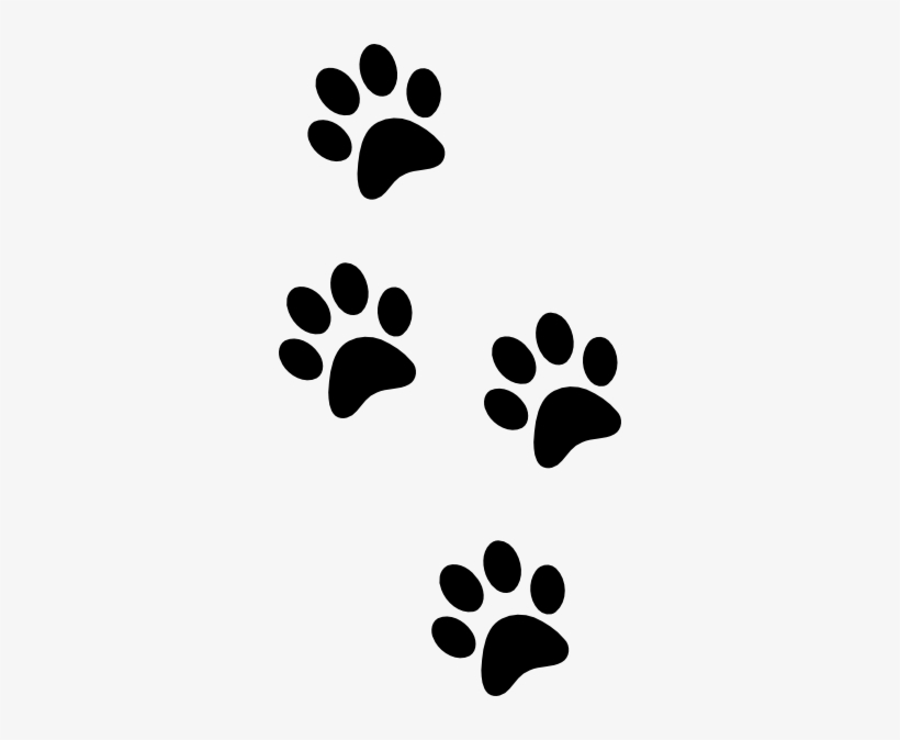 Lion Paw Print Clipart Clip Art 312x594 Png Download Pngkit The pnghut database contains over 10 million handpicked free to download transparent png images. lion paw print clipart clip art