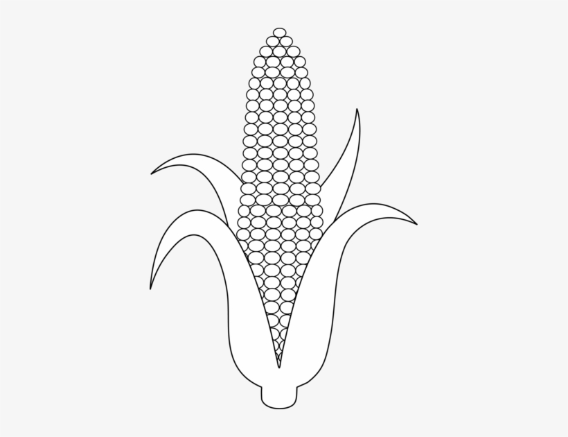 Corn Clipart Transparent Background - Corn Drawing, HD Png Download -  kindpng