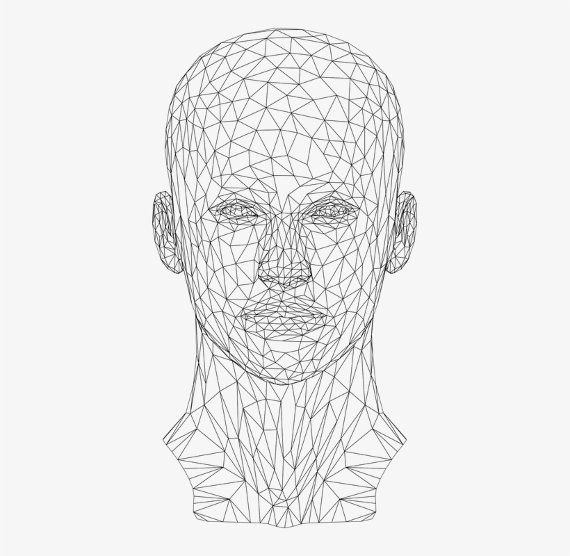 3d Wireframe Face Transparent 381x720 Png Download Pngkit
