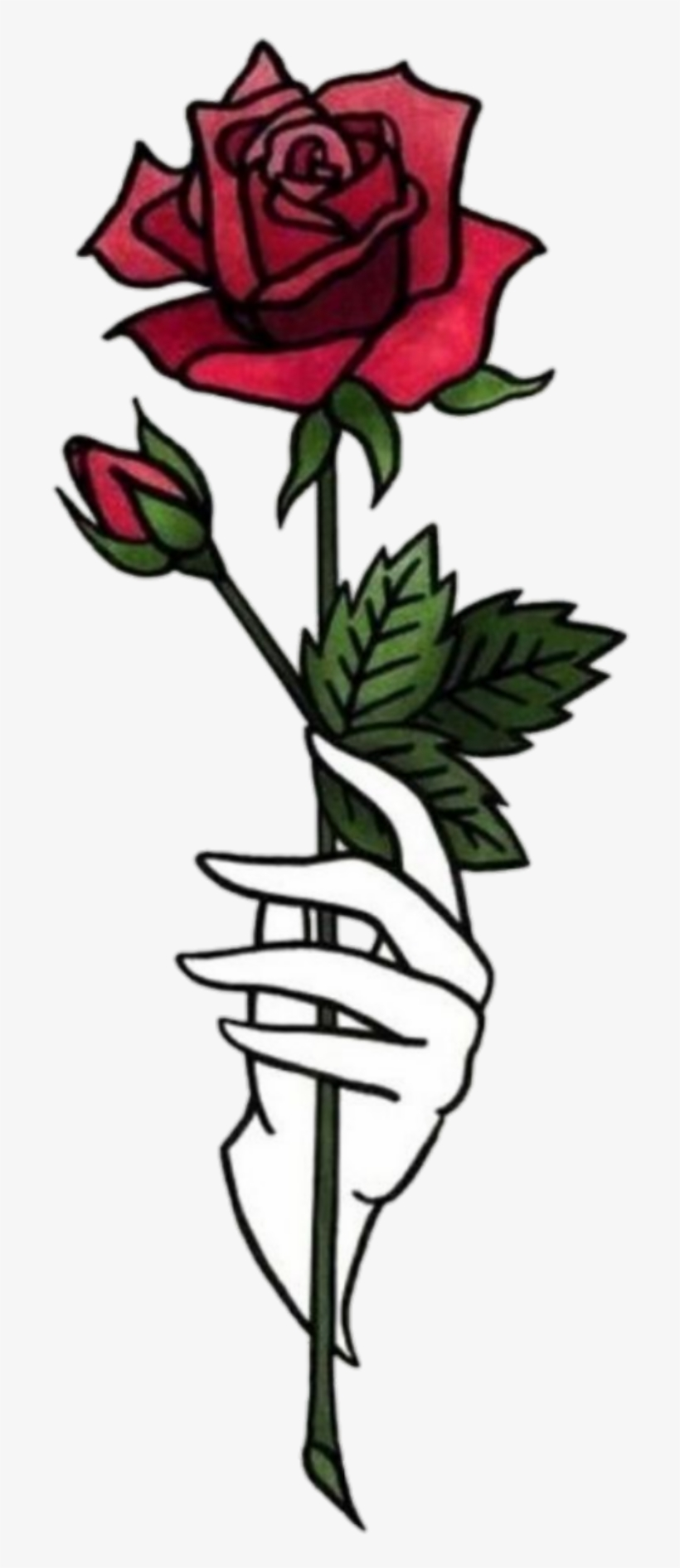 Sticker Hand Hands Tumblr Aesthetic Flower Png Rose Shawol Rose