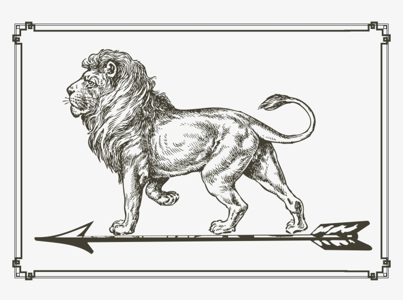 This Graphics Is The Lion Is In The Arrowhead About Lion