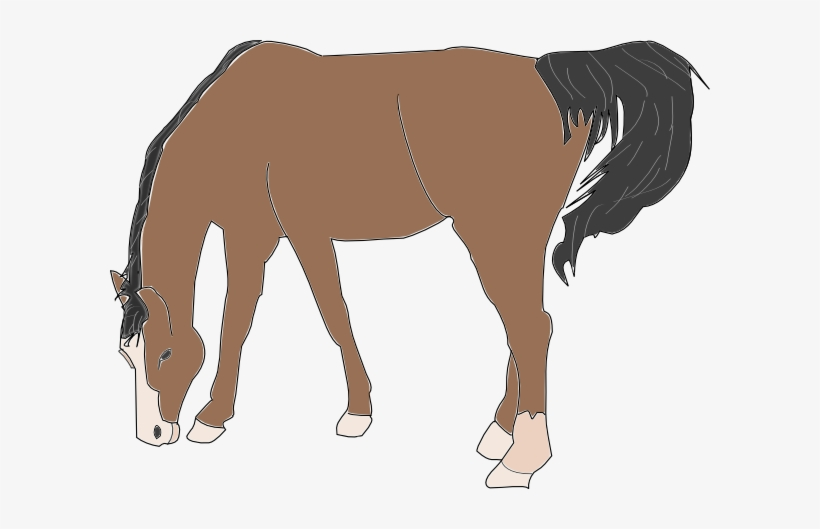 Horse, Horse Vector, Horse Clipart, Cartoon Horse PNG Transparent Clipart  Image and PSD File for Free Download   Vector art, Horses, Horse  illustration