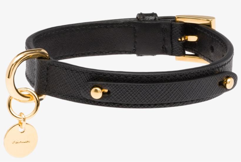 8a5ae1061b096 Prada Dog Collar - 2400x2400 PNG Download - PNGkit