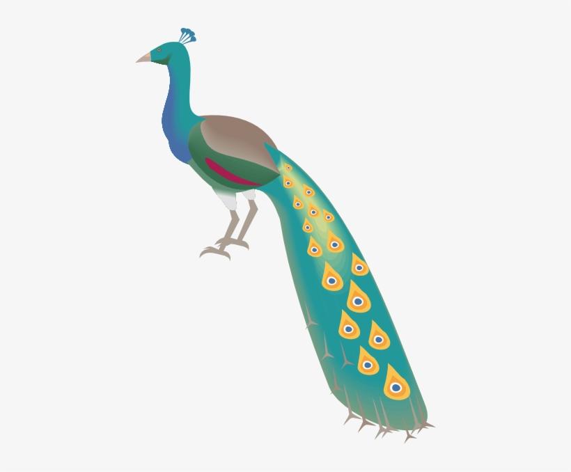Gambar Kartun Burung Merpati