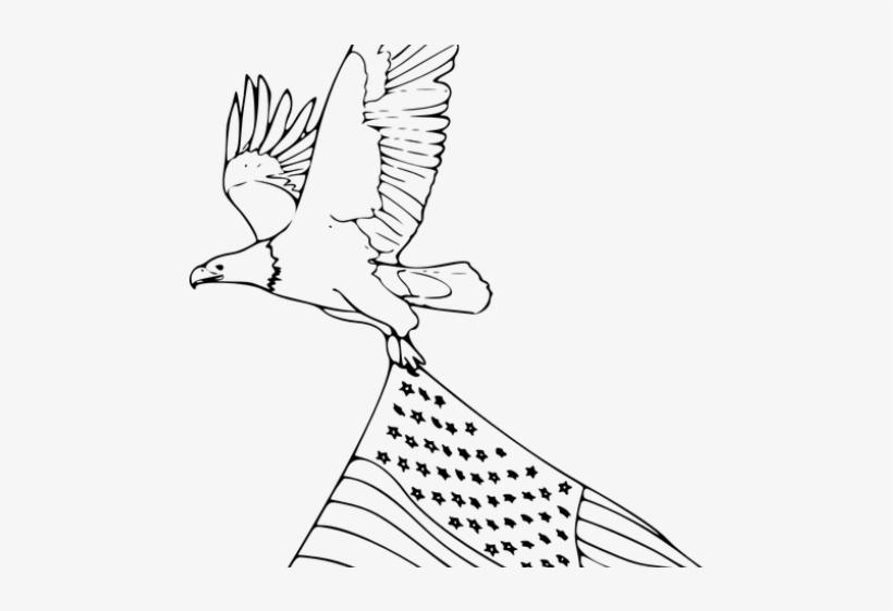 Drawn Bald Eagle With Flag Www Genialfoto Com