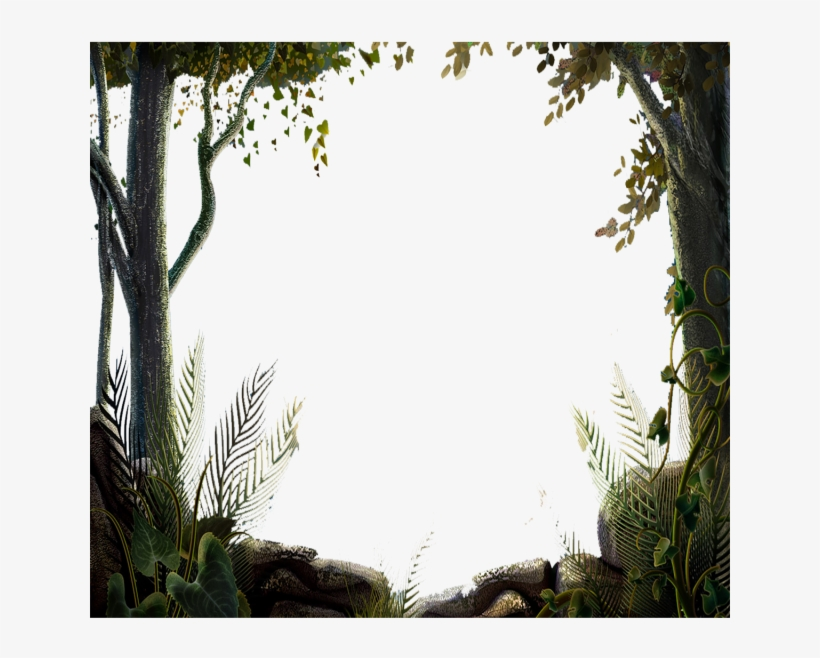 Nature Tree Forest Border Vector Tree Nature Design