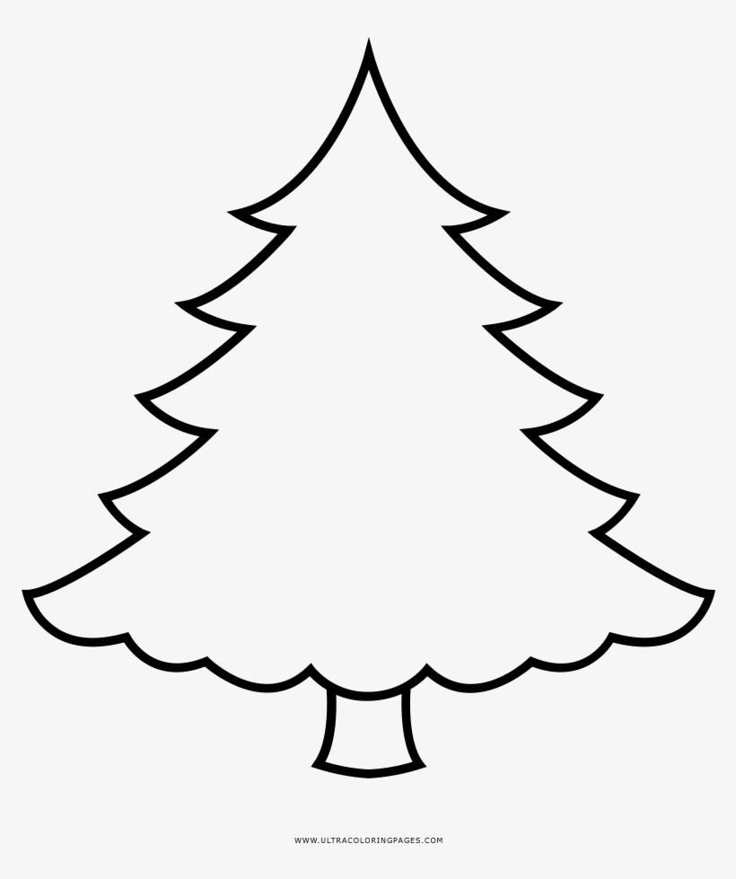Arvore De Natal Desenho Para Colorir Pine Christmas Tree