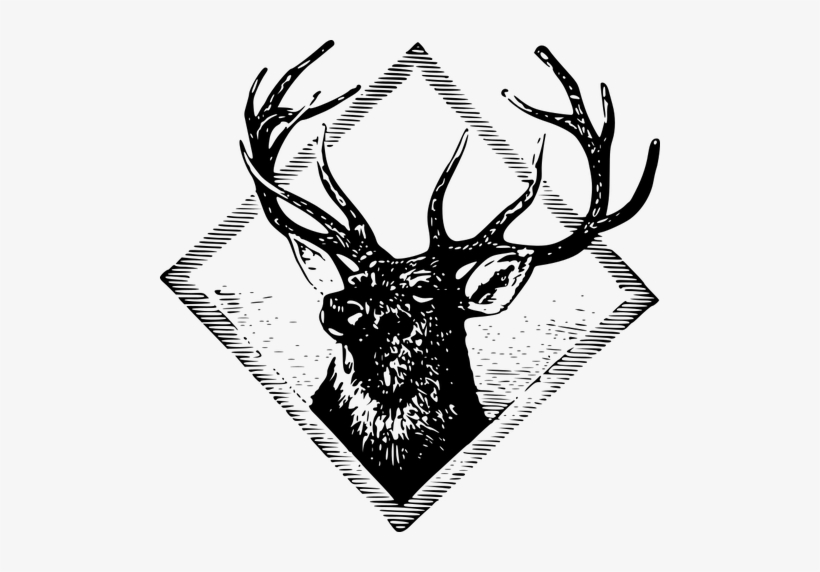 Deer Head Png, Vector, PSD, and Clipart With Transparent Background for  Free Download | Pngtree