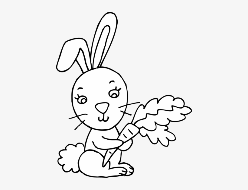 Bunny Black And White Rabbit Clipart Outline In Black