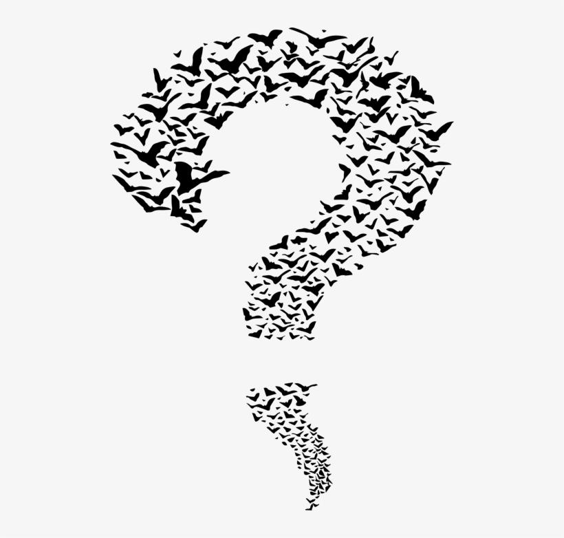 Pizi Question Mark Shirt Mens Graphic Tops