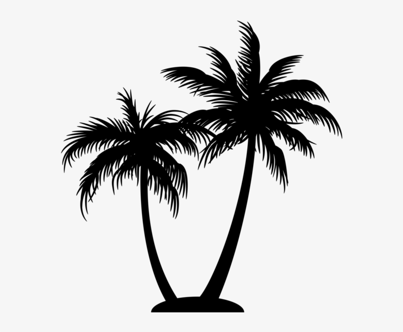 Palm Tree Logo On Black And White Coconut Tree Silhouette Png