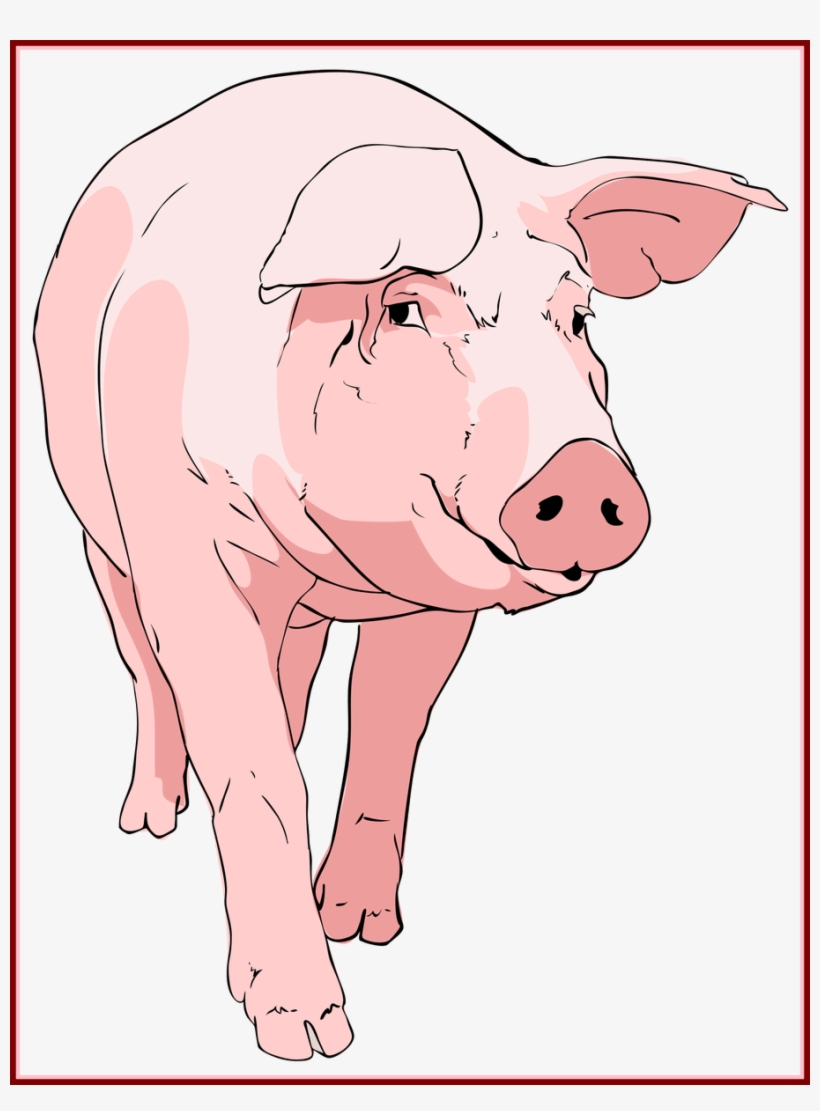 Unbelievable Ingenious Clip Art Pig Face With Transparent Background Piglet Animated Gif 908x1187 Png Download Pngkit