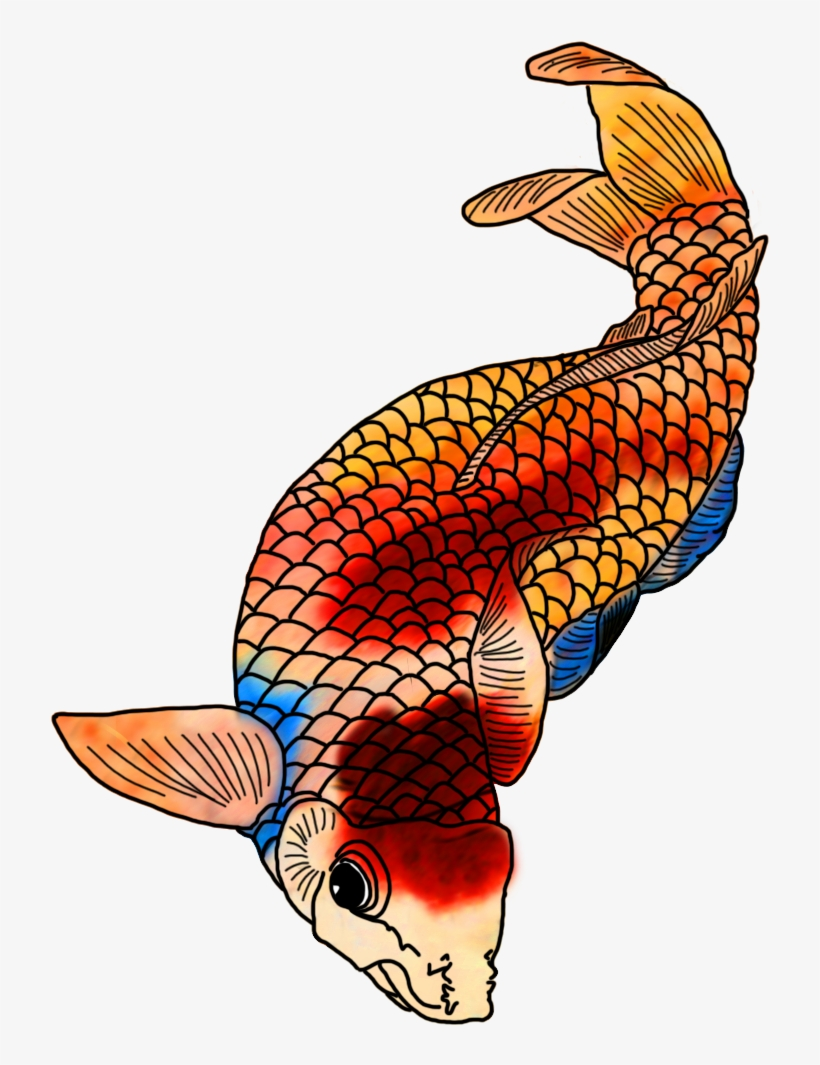 Colorful Koi Fish Drawings Clip Black And White Stock Colorful Japanese Koi Drawings 736x1063 Png Download Pngkit