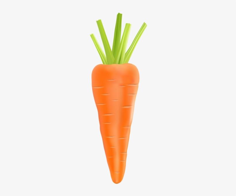 Carrot Transparent Png Clip Art Image Carrot Transparent 206x600