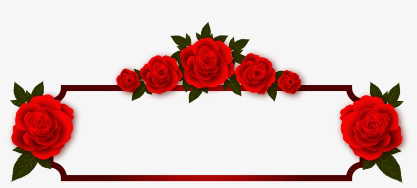 Rose Flowers Plate Frame Photo Frame Red Transpa Background Odia