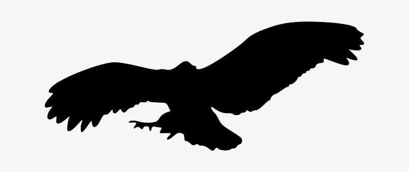 Bird Silhouette Eagle Png - Owl Flying Silhouette Png - 640x320 PNG