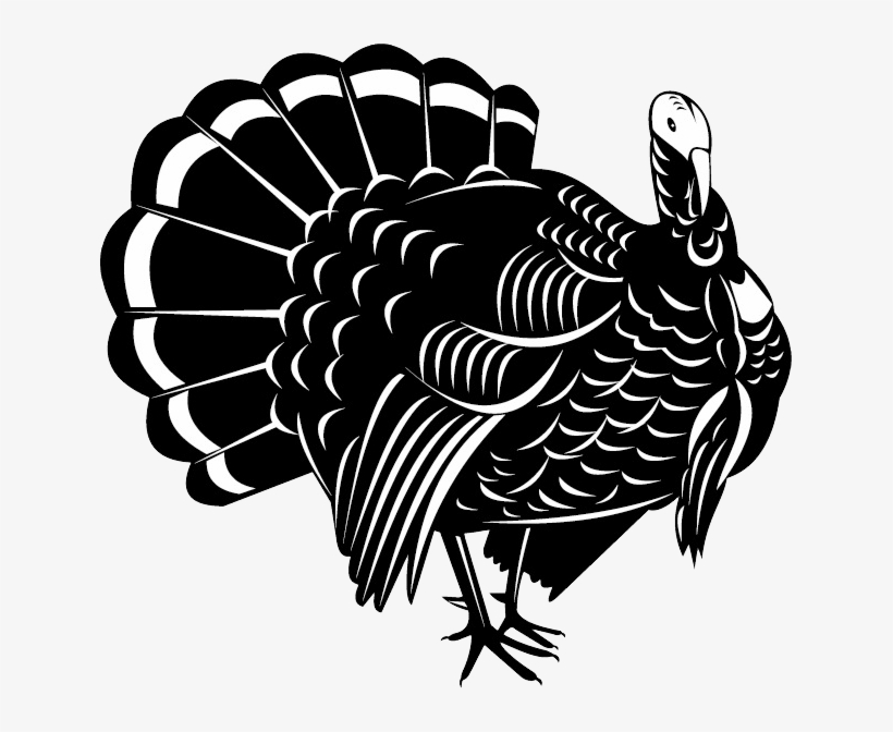 Turkey Bird Png Image With Transparent Background - Wild ... (820 x 672 Pixel)