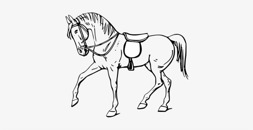 Horse Clipart Black And White Desenho De Cavalo Para Colorir