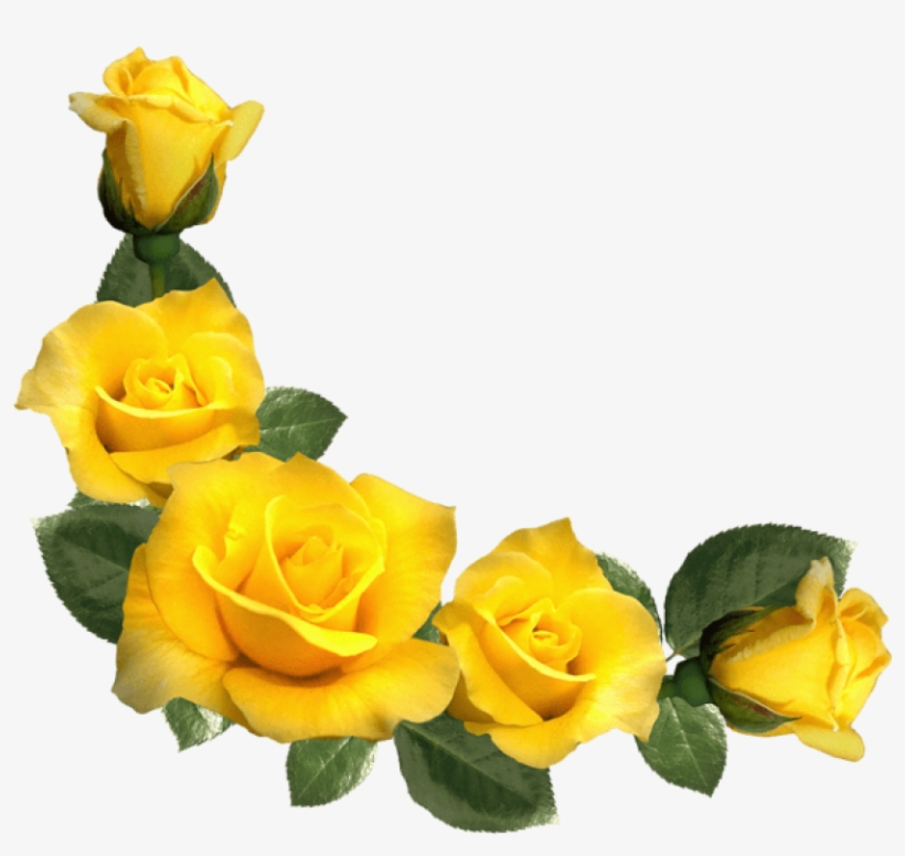 Free Png Beautiful Yellow Roses Decor Png Images Transparent