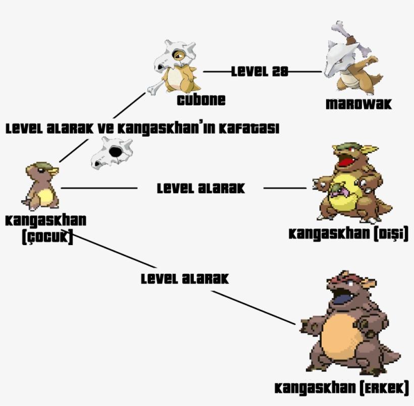 Cubone Evolution Chart