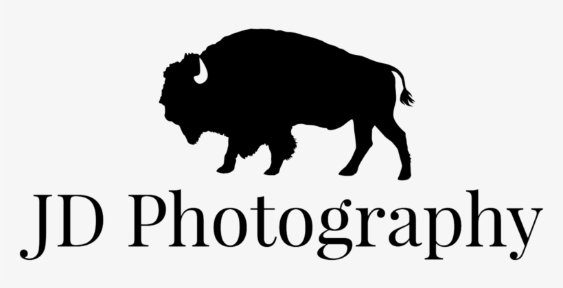 jd photography logo black 1000x576 png download pngkit jd photography logo black 1000x576
