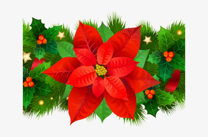 Christmas Poinsettia Clipart Images, Christmas Poinsettia Clipart  Transparent PNG, Free download